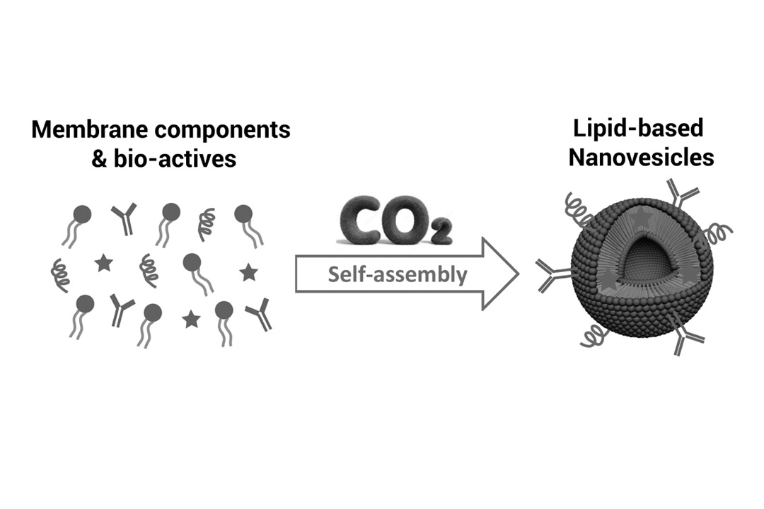 Nanomol Technologies Researchers Publish an Advance Article on Chemical Society Reviews